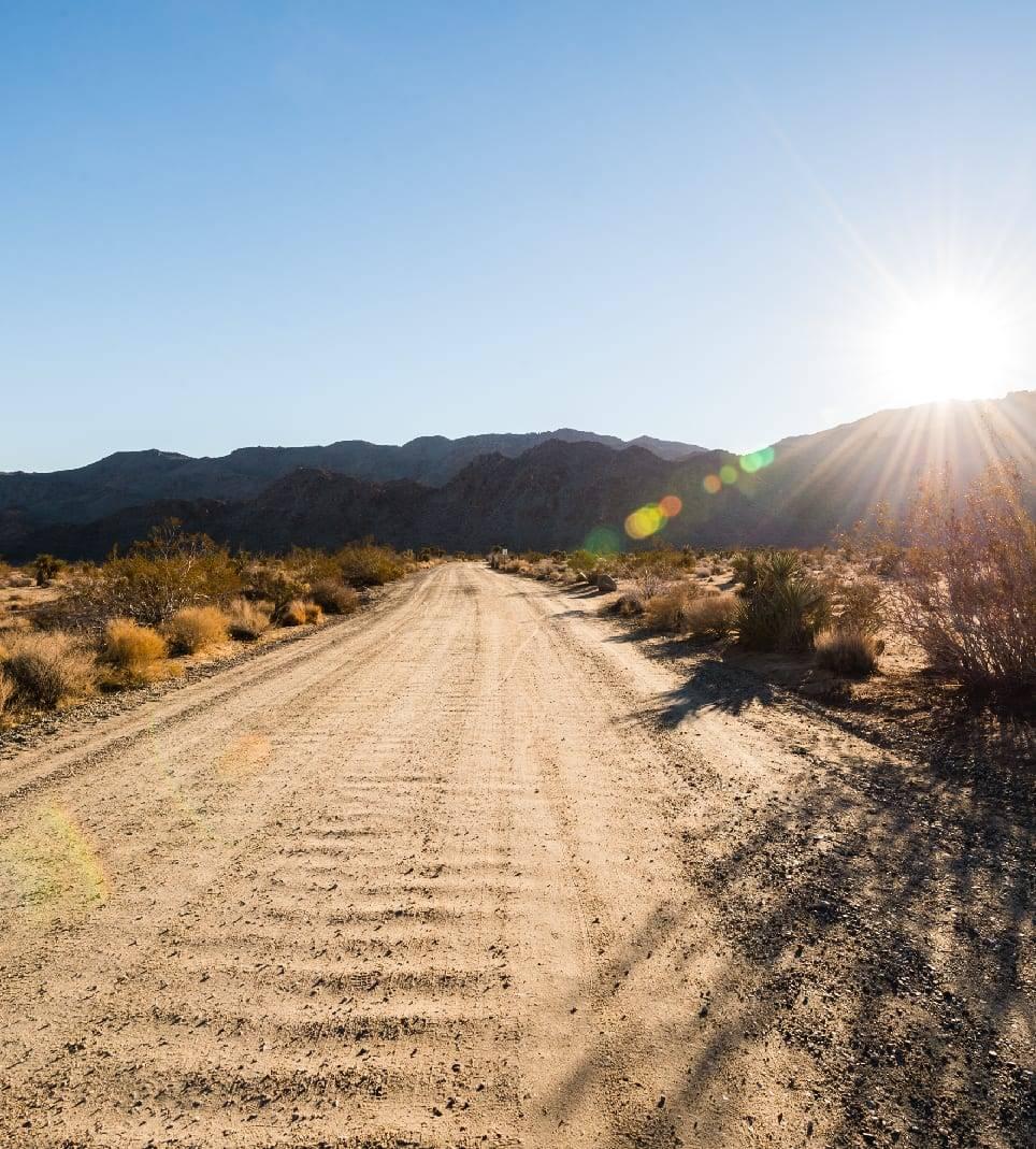 The road less traveled in Joshua Tree
