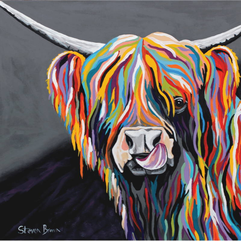 Steven Brown McCoo Artwork