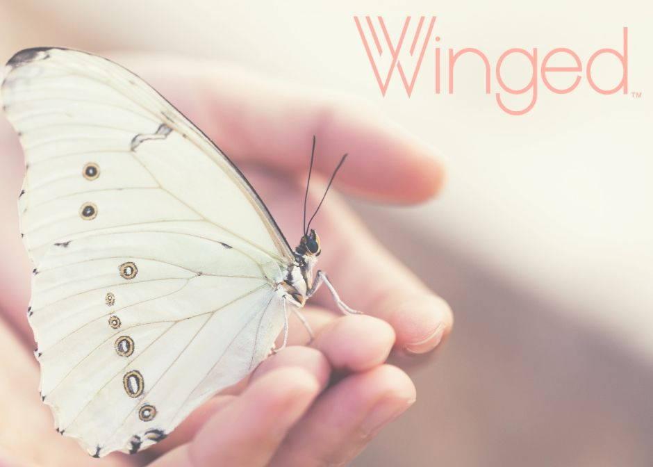 wingedcbdoilforwomen