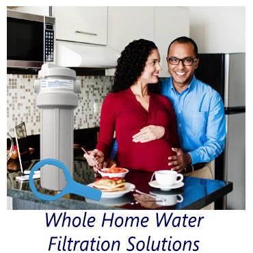 Whole Home Water Filtration Systems