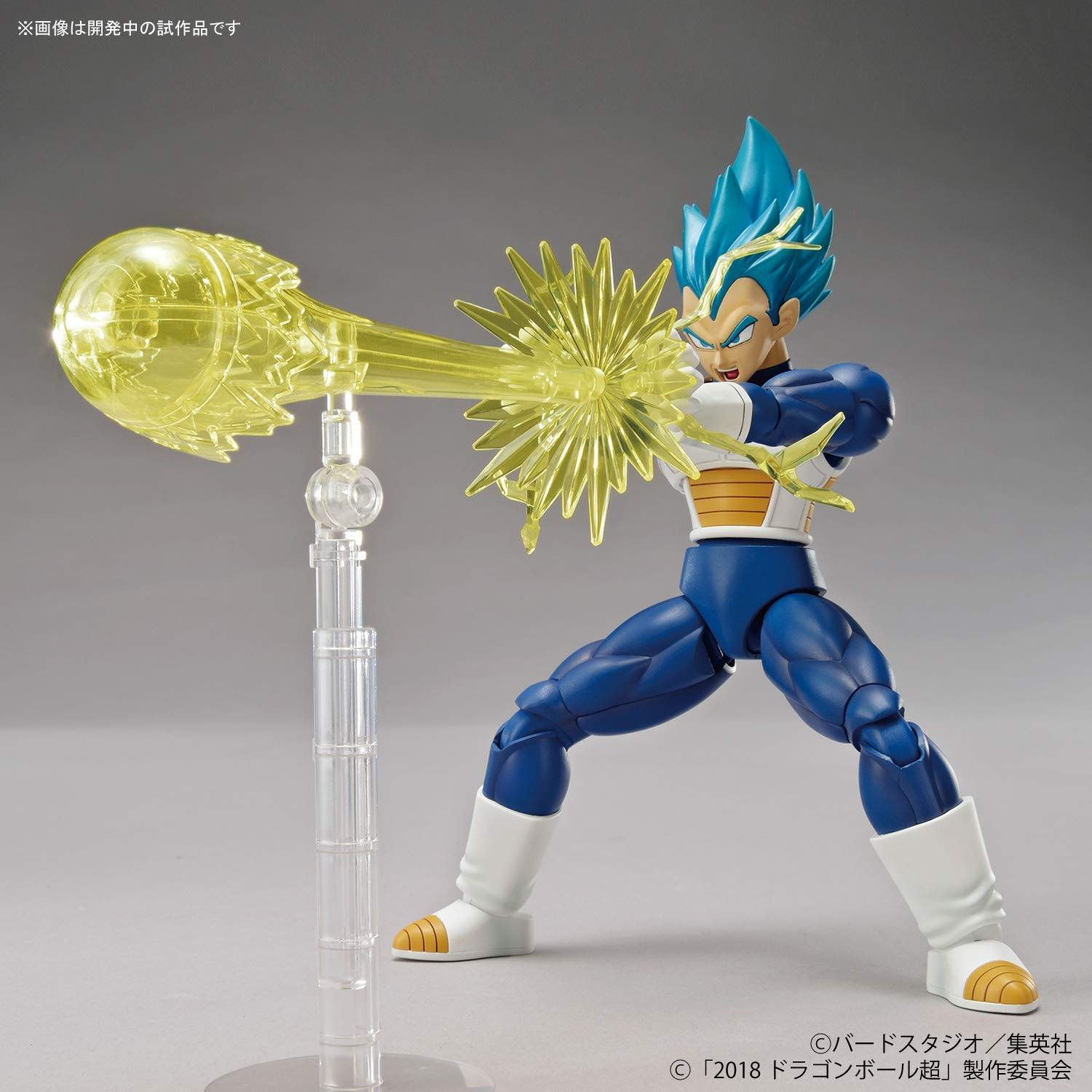 Dragon Ball Super SSGSS Vegeta Special Color