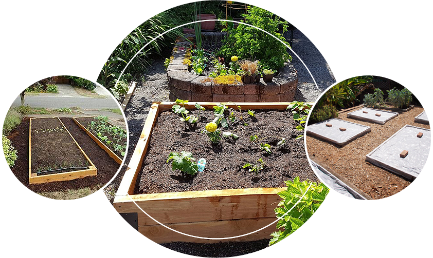 Different kinds of raised garden beds