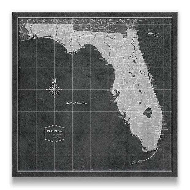 Florida Push pin travel map modern slate