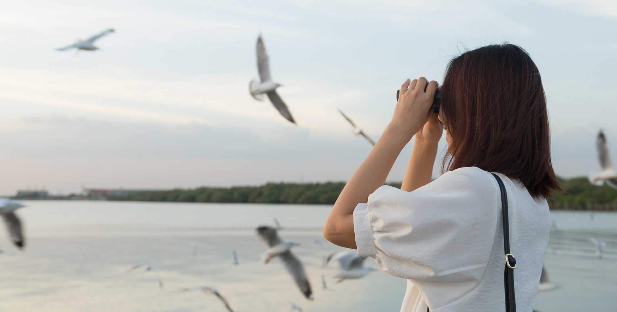 Bird Watching Binoculars Buying Guide
