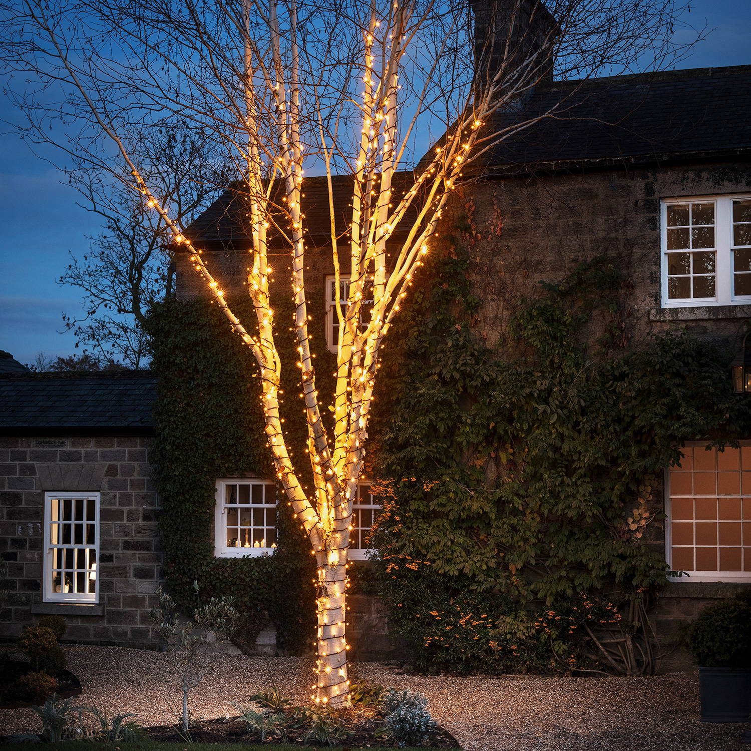 A large tree wrapped in warm white string lights in front of a stone house