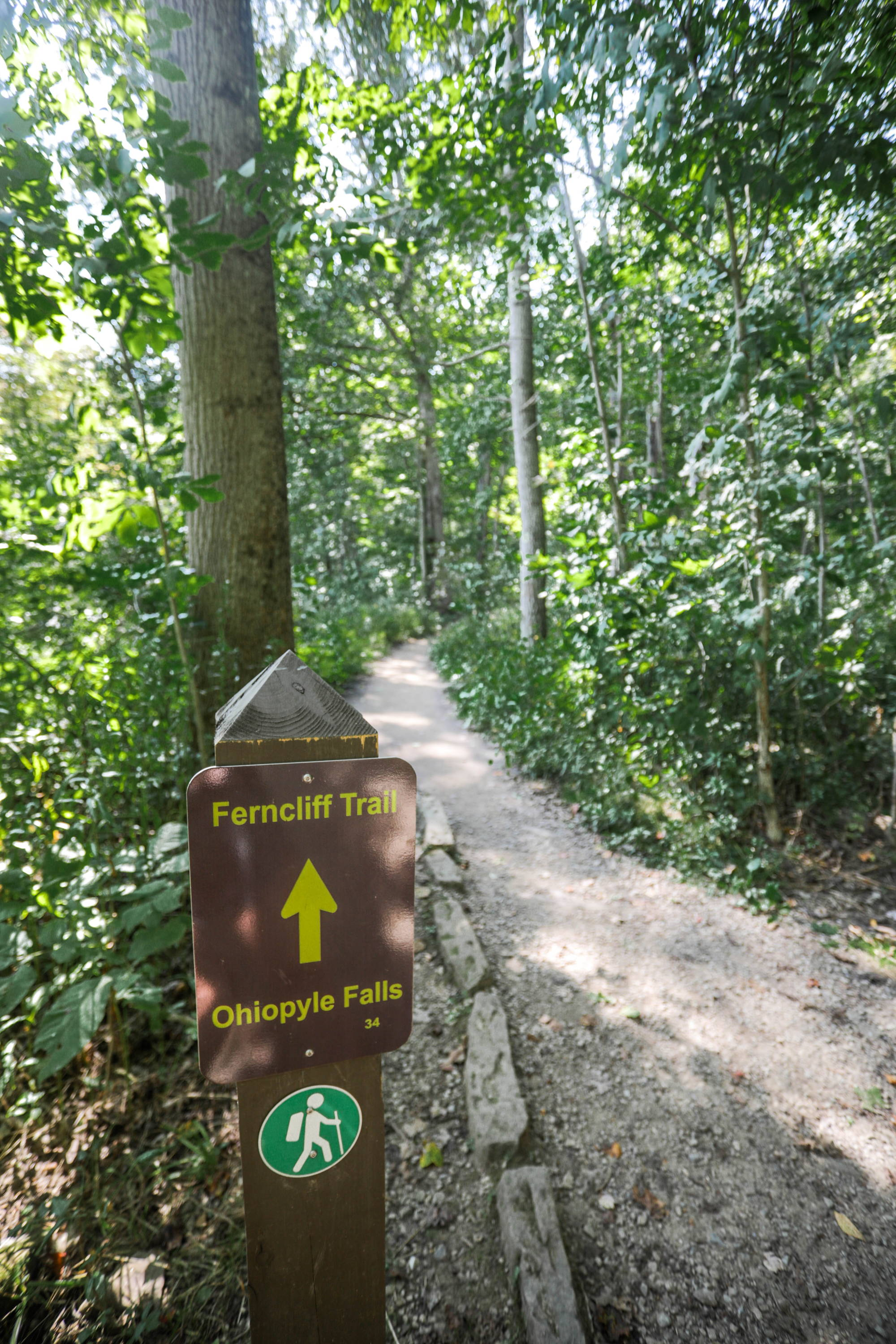 Ferncliff Trail in Ohiopyle State Park