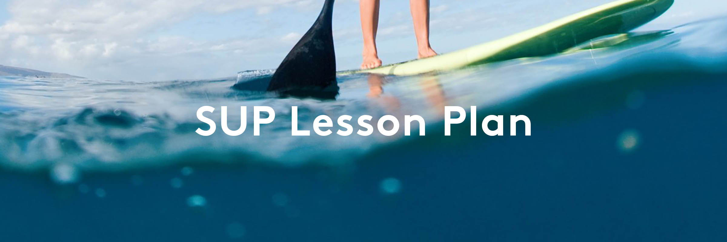 La Jolla Stand Up Paddle Boarding Lesson Plan