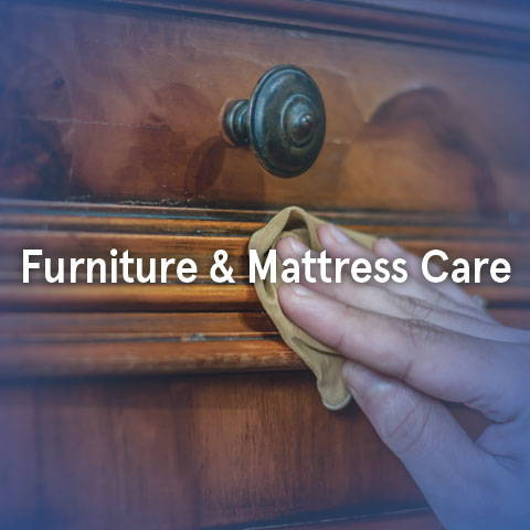 furniture and mattress care tips