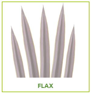 ARTIFICIAL FLAX PLANTS