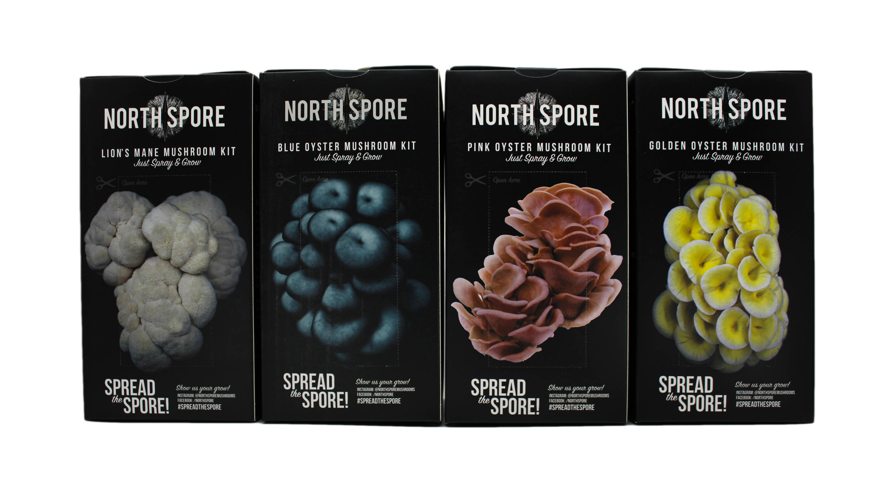 North Spore Spray and Grow Kits in 4 species