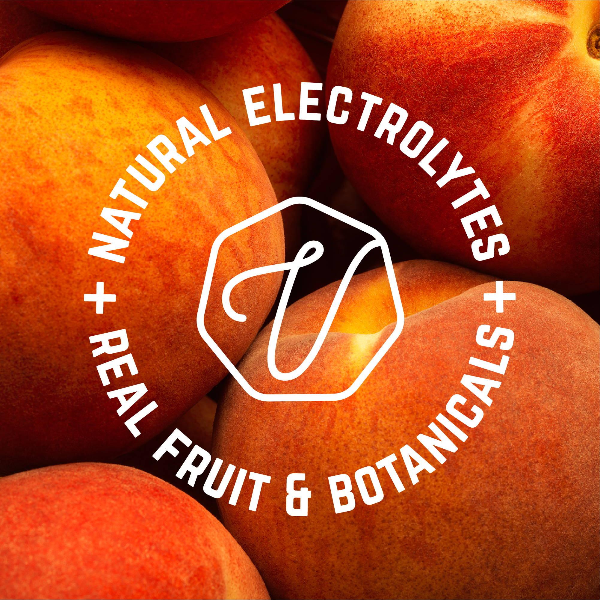 Veloforte Real Hydration | Natural Electrolytes | Real Fruit & Botanicals | Hydration Powders