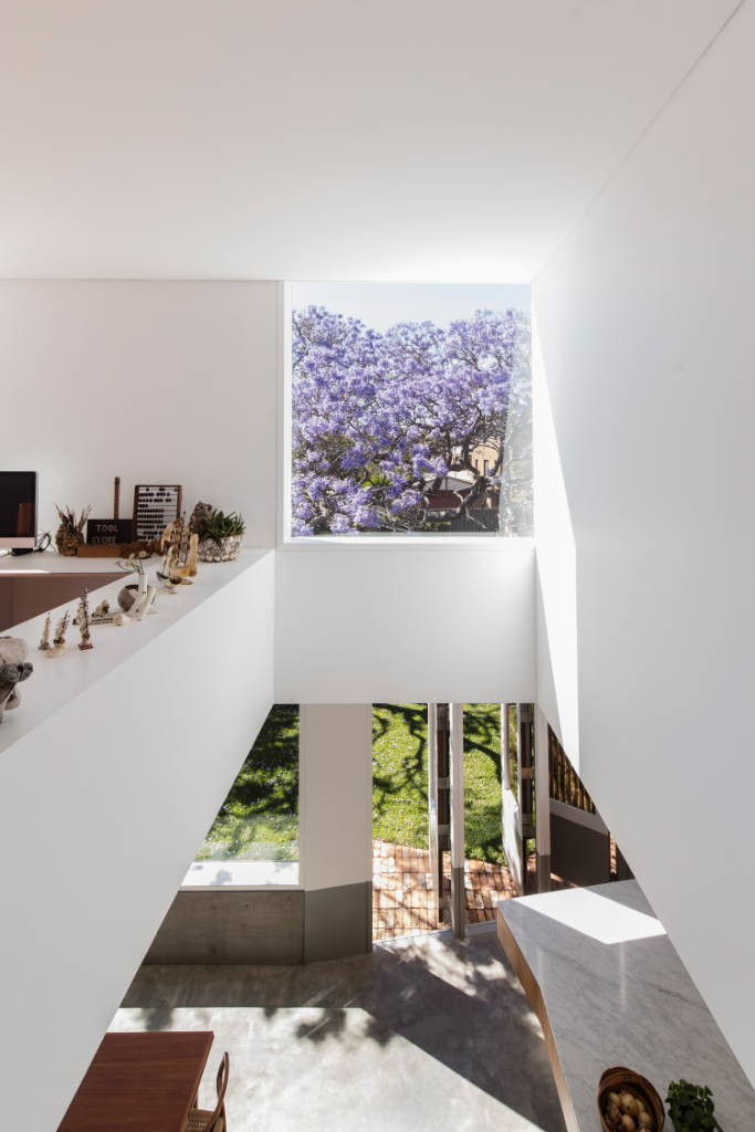 Contempo | JAC HOUSE | DULWICH HILL, NSW