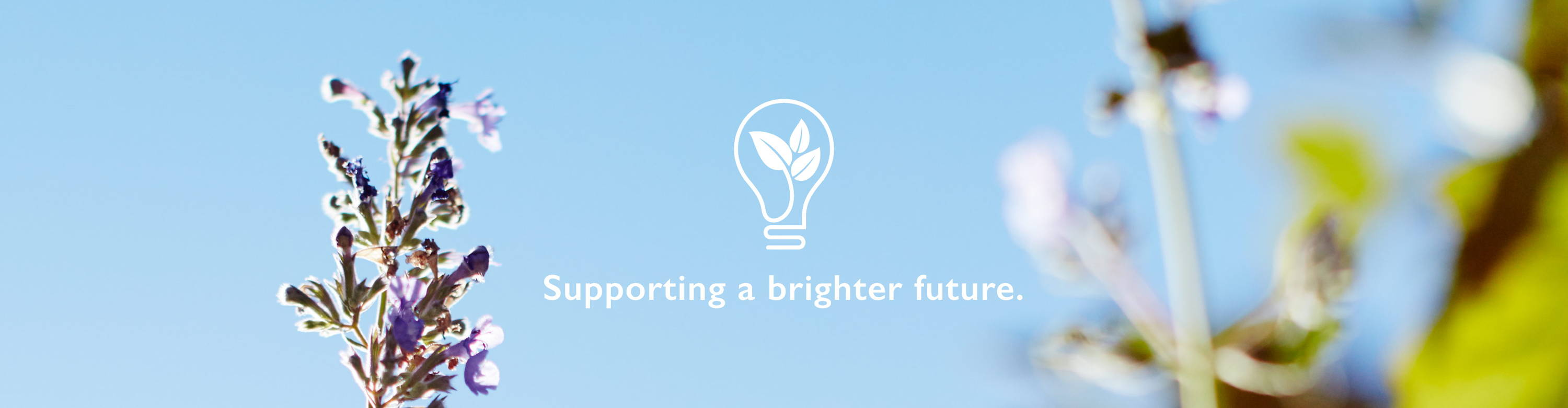 Supporting a brighter future