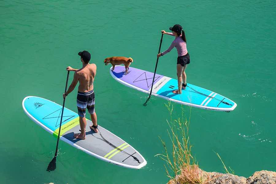 Two people on SUP boards with a dog