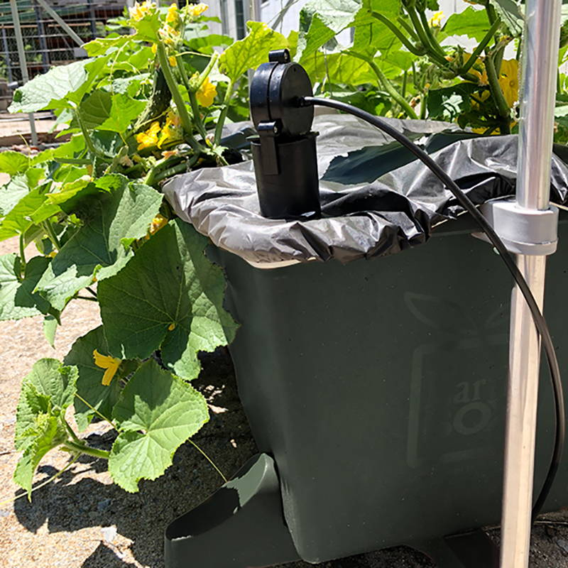 Automatic watering system hooked up to an EarthBox original container