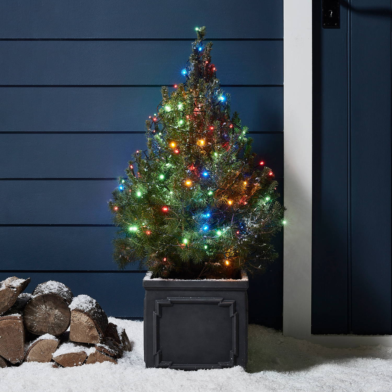 Kleiner Weihnachtsbaum außen mit bunter Lichterkette.