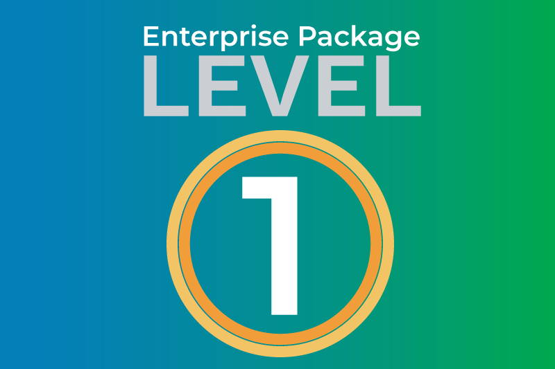 Enterprise level 1