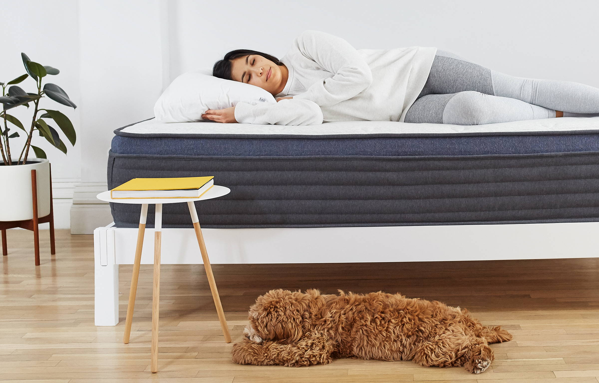 Woman laying on Helix Midnight Luxe mattress on Helix White Wooden Frame with Teddy Bear on the ground