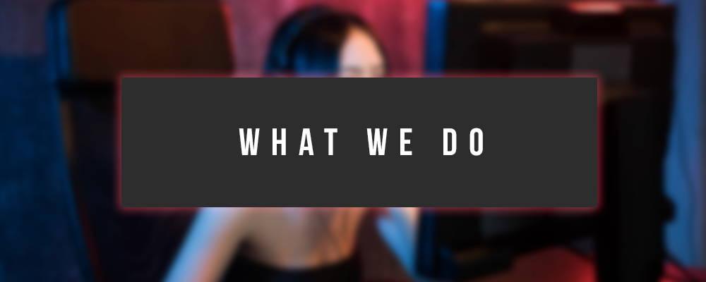 What we do, Girl gamer