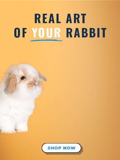 custom rabbit art