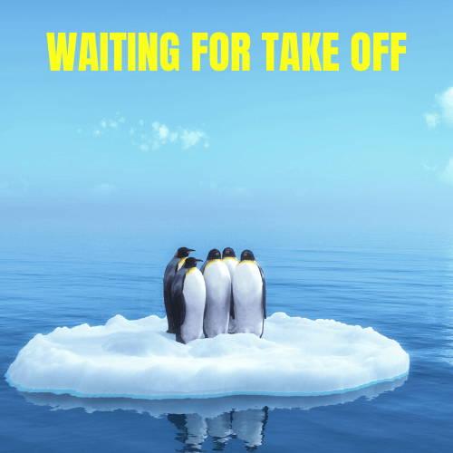 Waiting for Take Off Surfer Penguins Meme