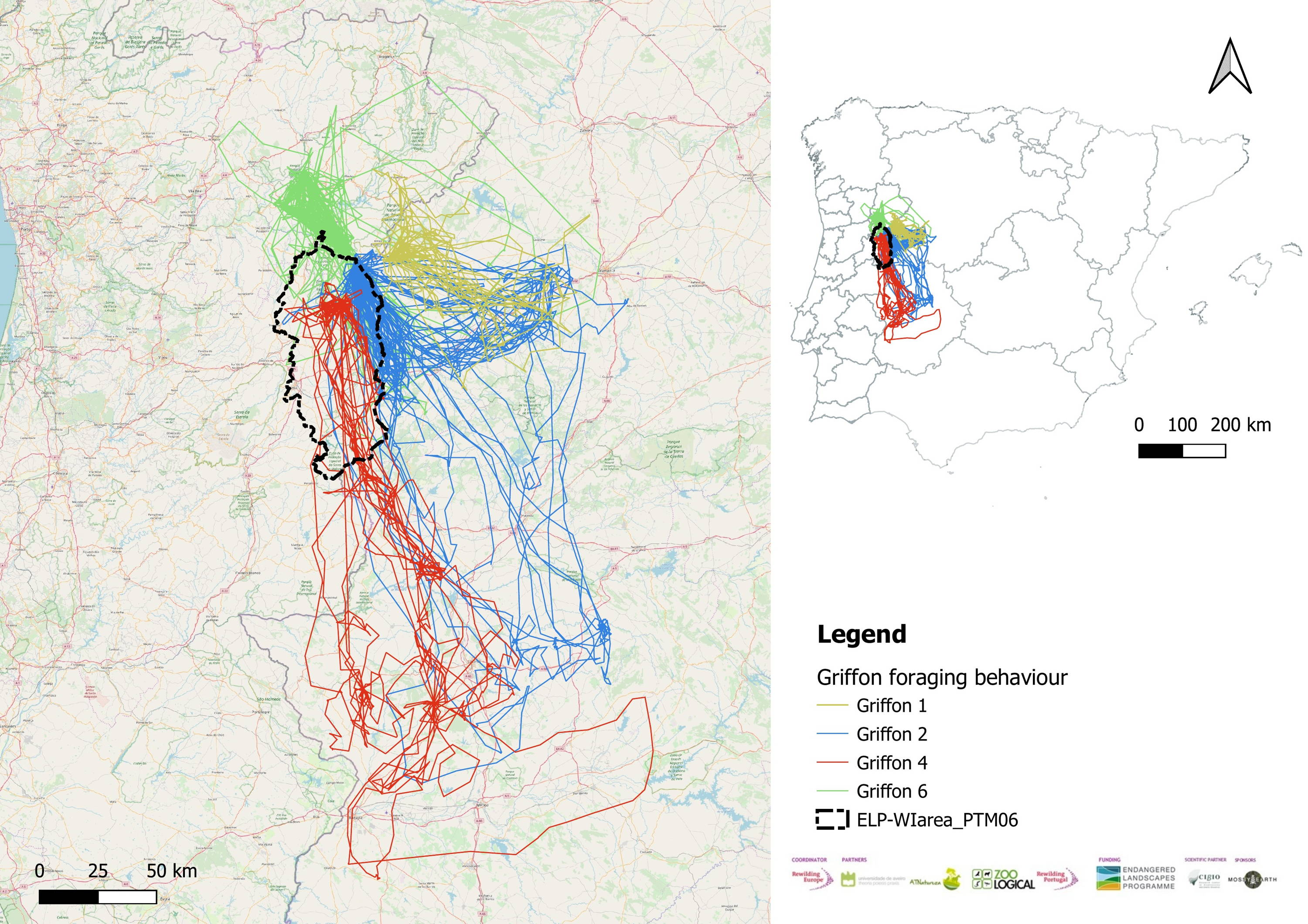 A map tracking the location of Griffon vultures in north of Portugal