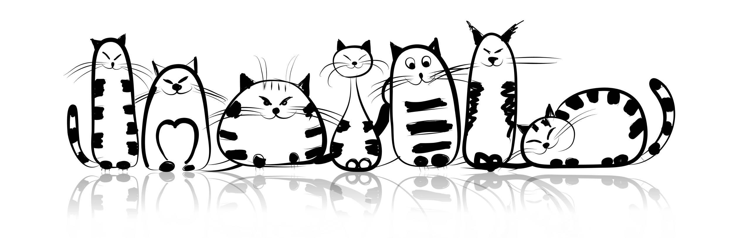 ideal cat weight