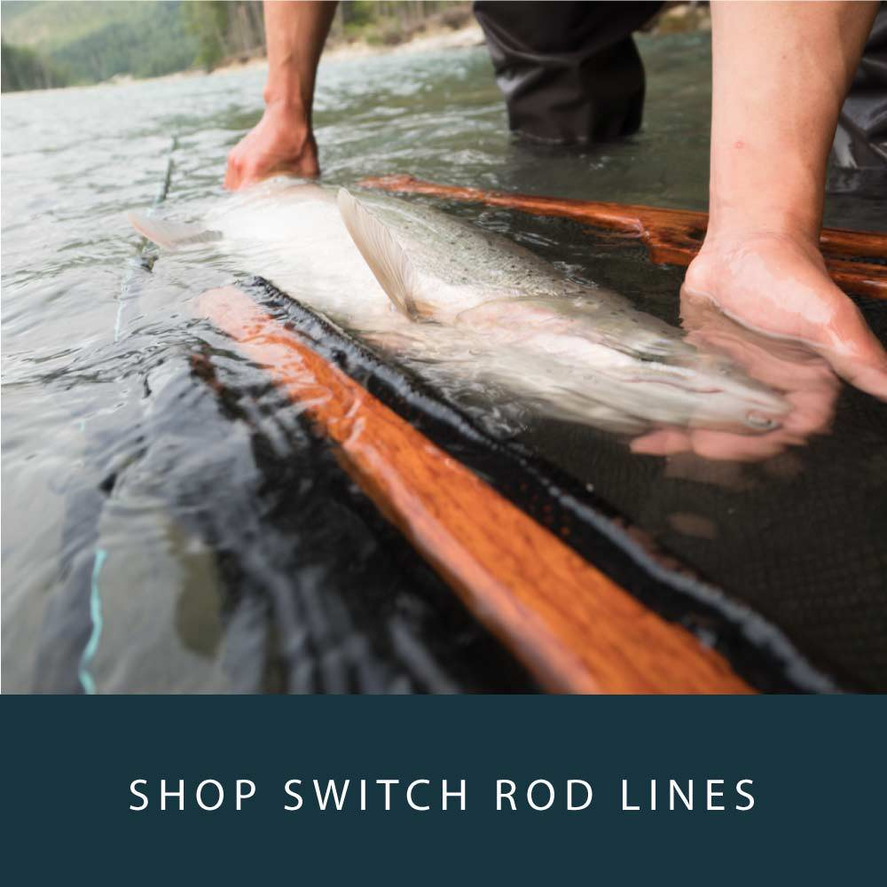 Spey Lines Switch Rods