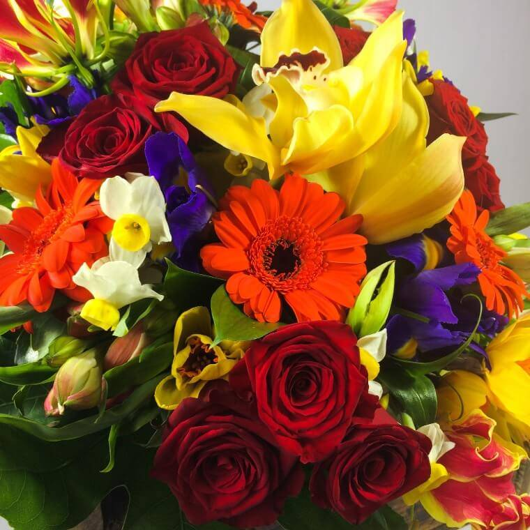 Upper Hutt Florist's Choice