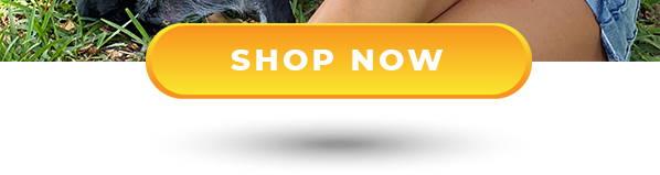 Shop now head button