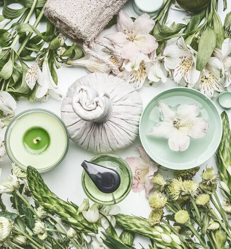Family Wellness with Herbs Certification with Laura Ash at Scarlet Sage San Francisco
