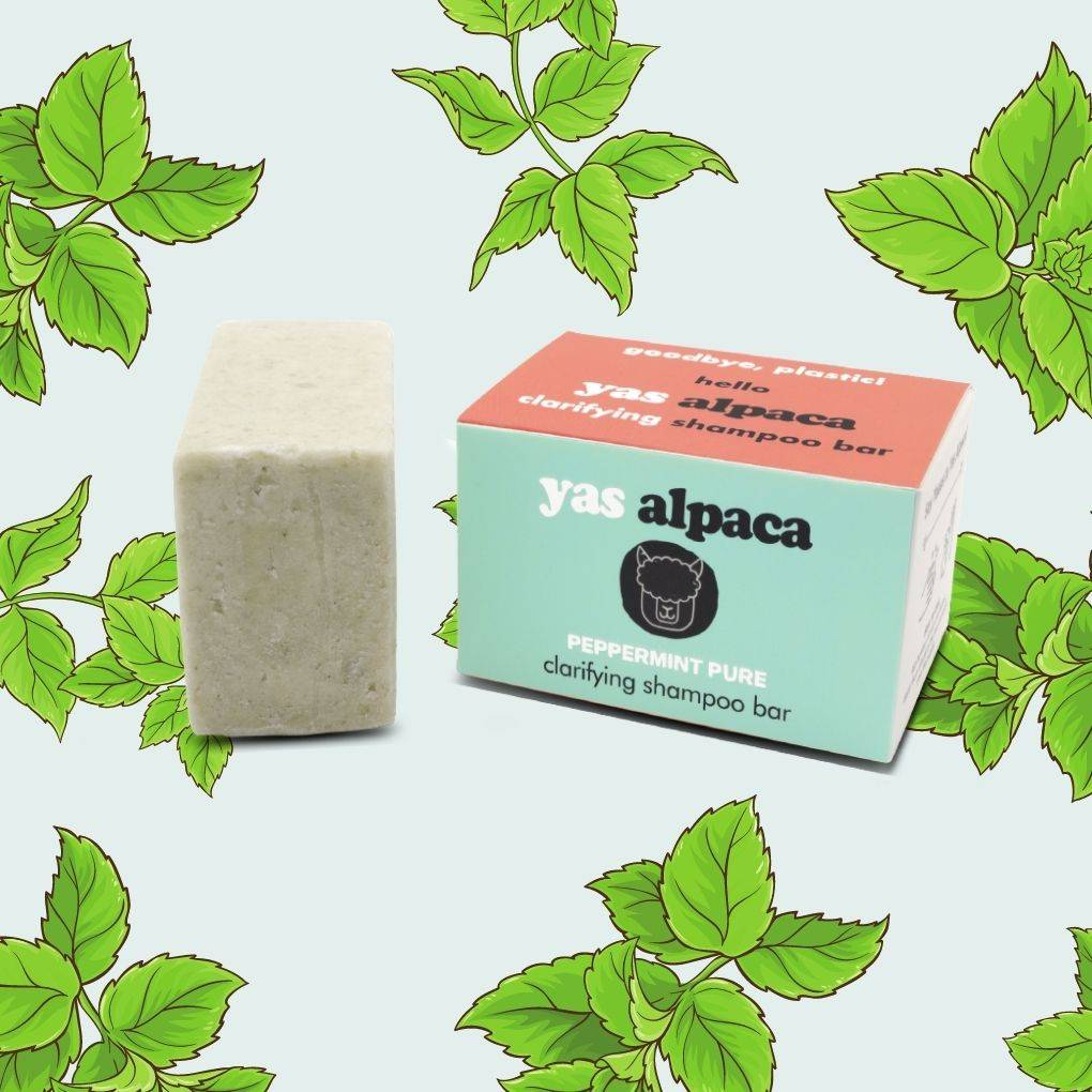 Yas Alpaca Peppermint Pure shampoo bar blue and coral  packaging featured with green bar