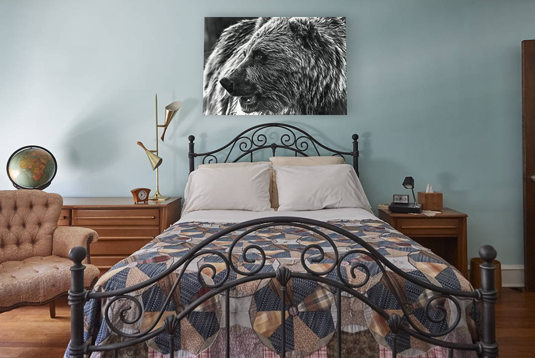wildlife photography for sale in bedroom home decor