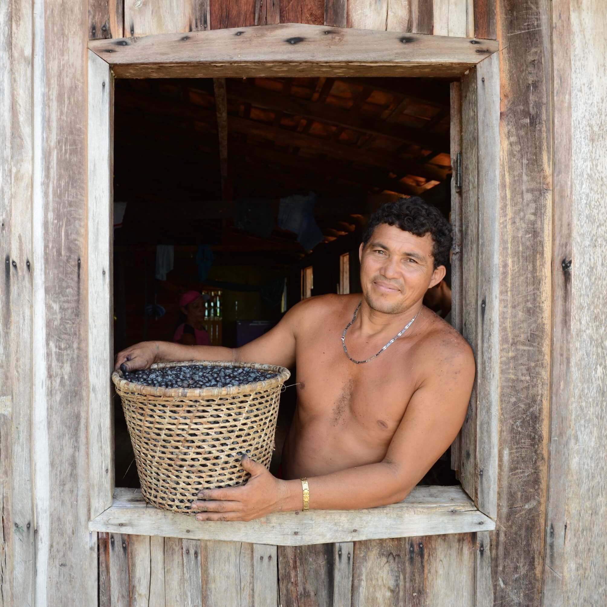 Acai Farmer mit frisch geernteten Acai Beeren