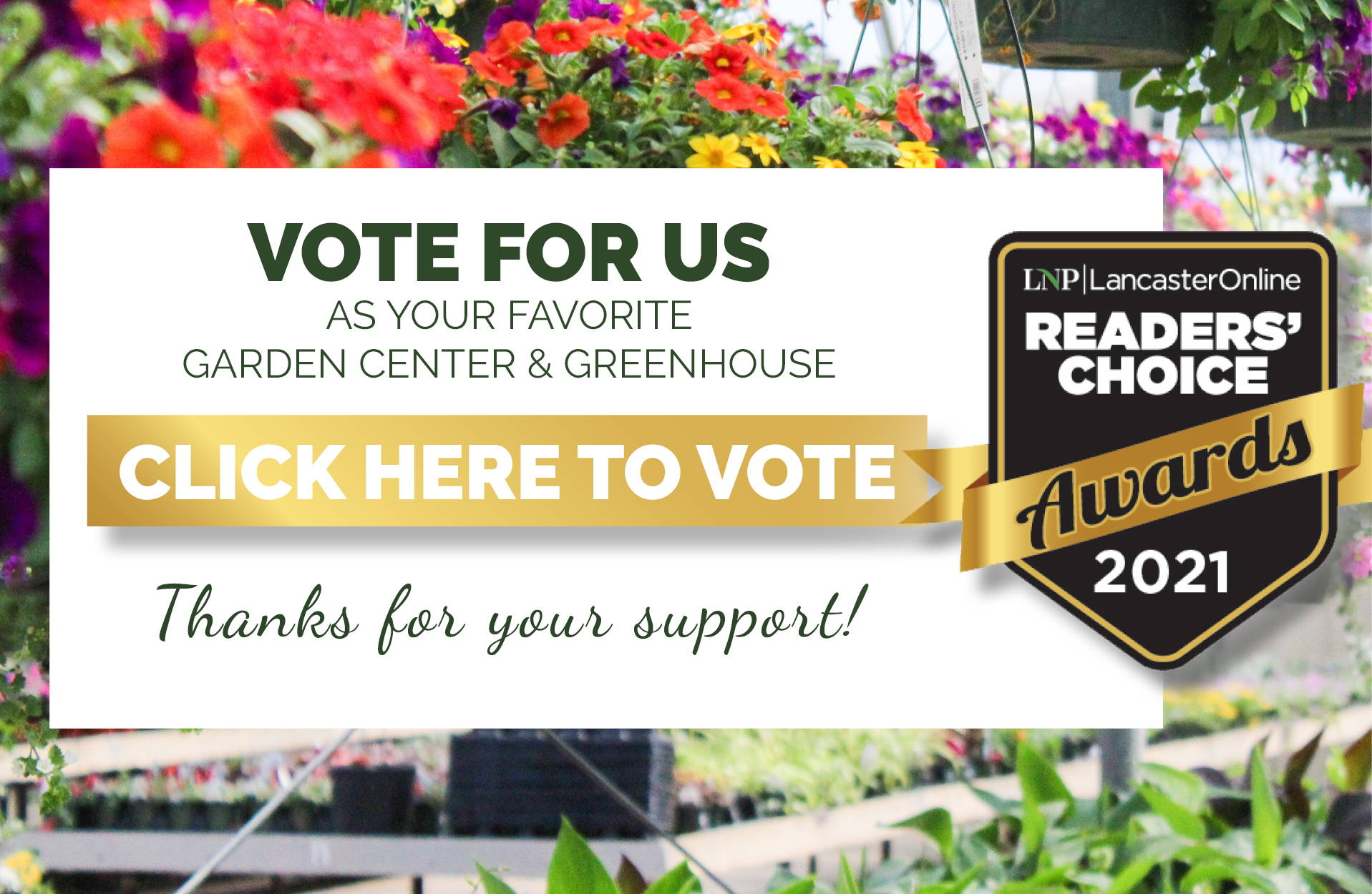 Vote for us as your favorite garden center and greenhouse! LNP 2021 Reader's Choice Awards. Click here to vote.