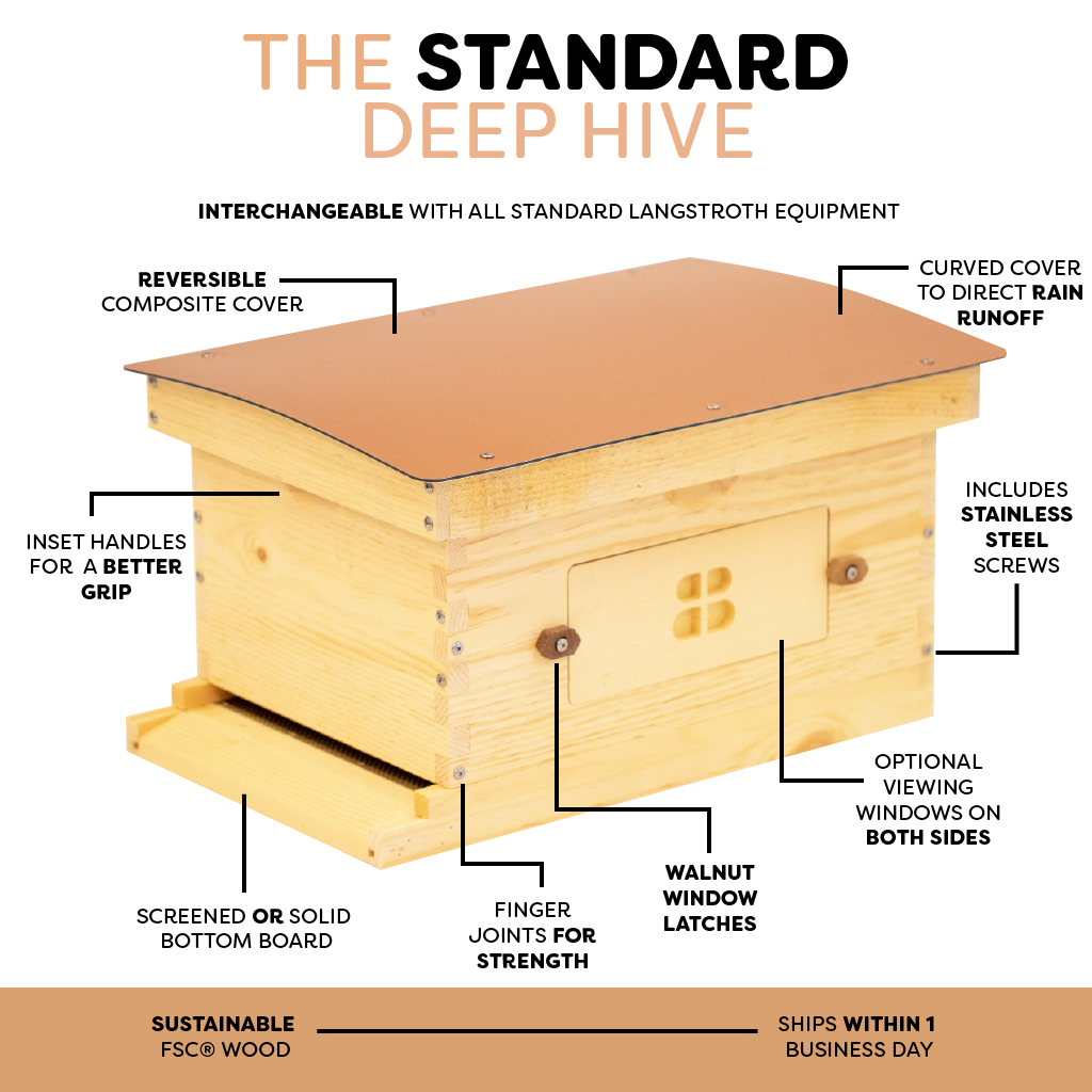 Standard deep hive with windows