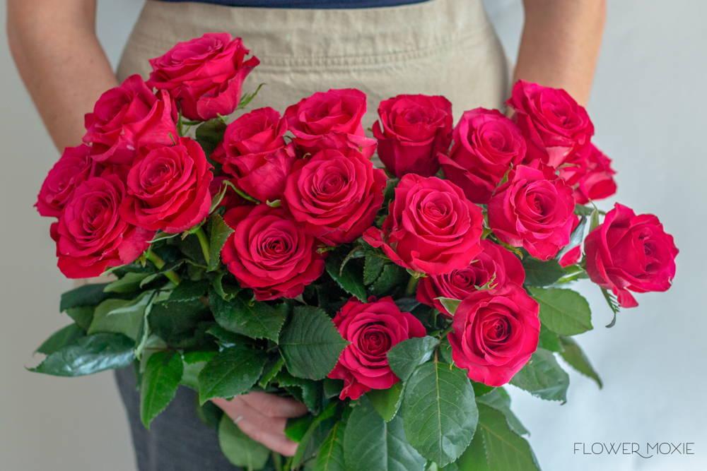 Roseberry Roses