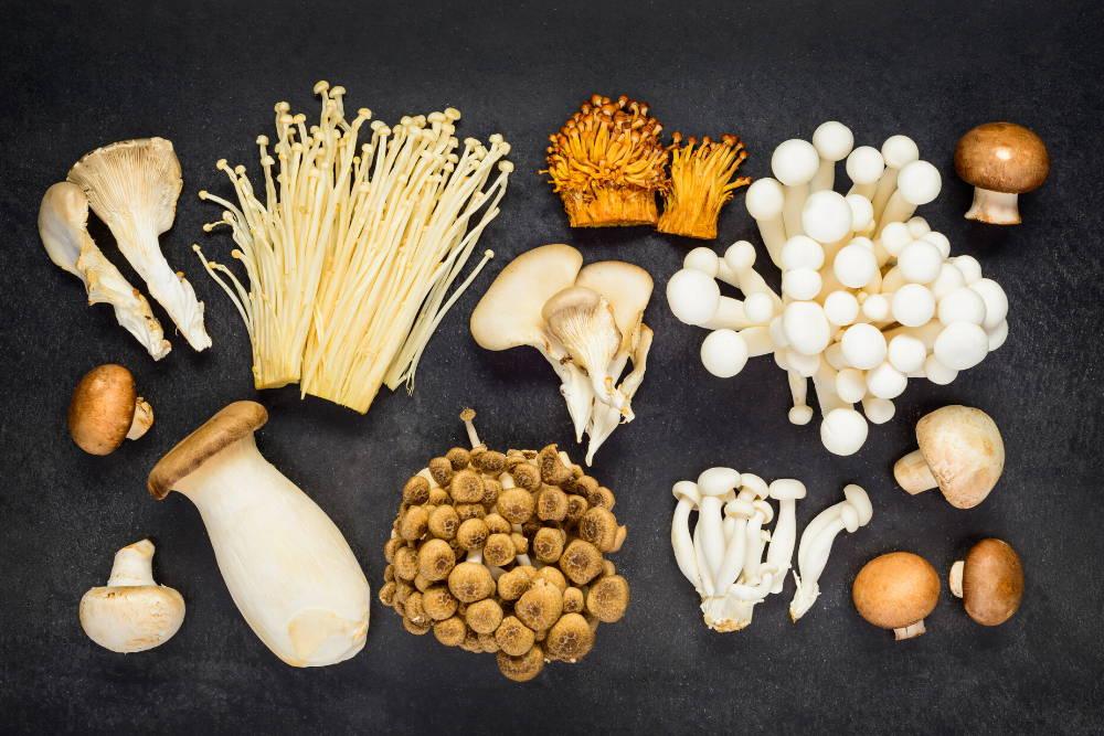 variety of mushroom superfoods on black table boost your immune system with mushroom superfoods
