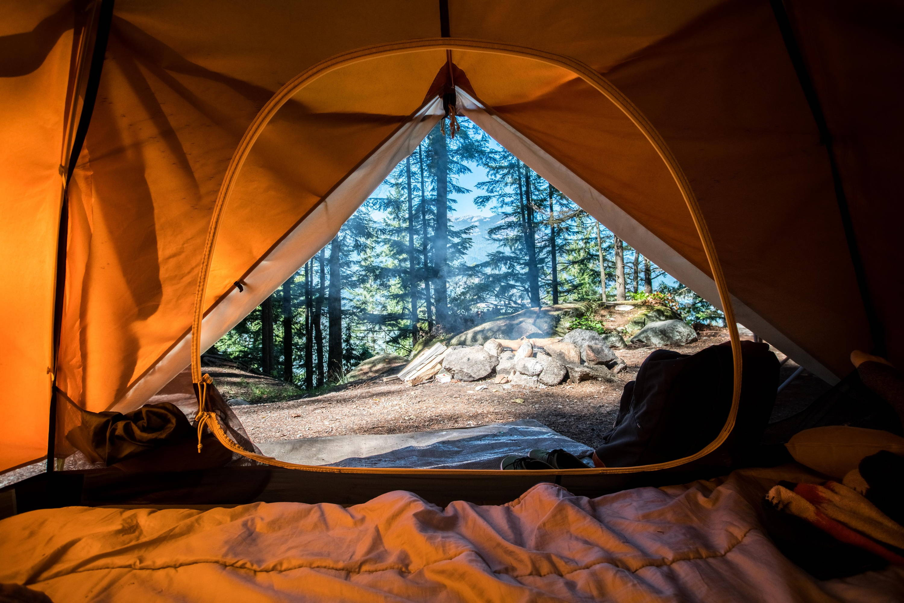 View of tent opening peering into forest outside.