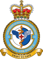 1 Aero Med Evac Squadron