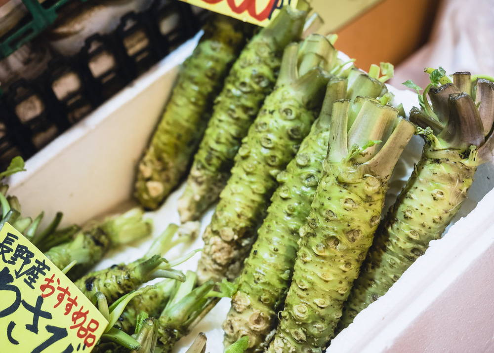 Wasabi for sale, wasabi rhizome