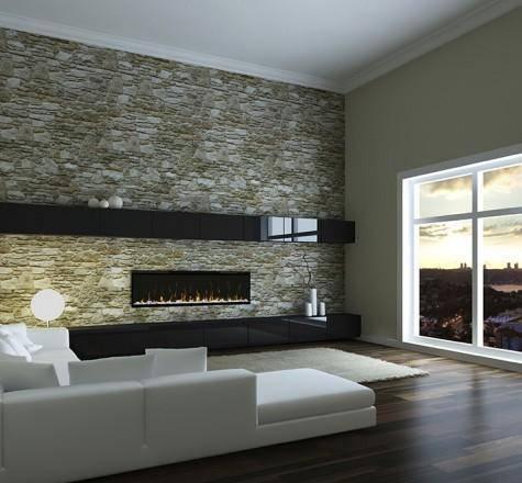 Dimplex IgniteXL 50 In Living room wall