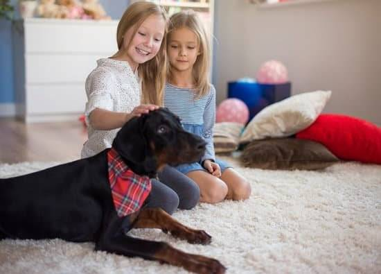 Two young blonde girls sitting in their house petting a black and brown dog.