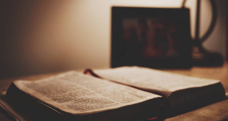 Daily Readings. Reflection on the daily reading