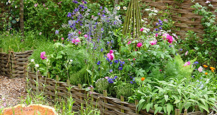 Design Your Own Garden With Food and Fragrance