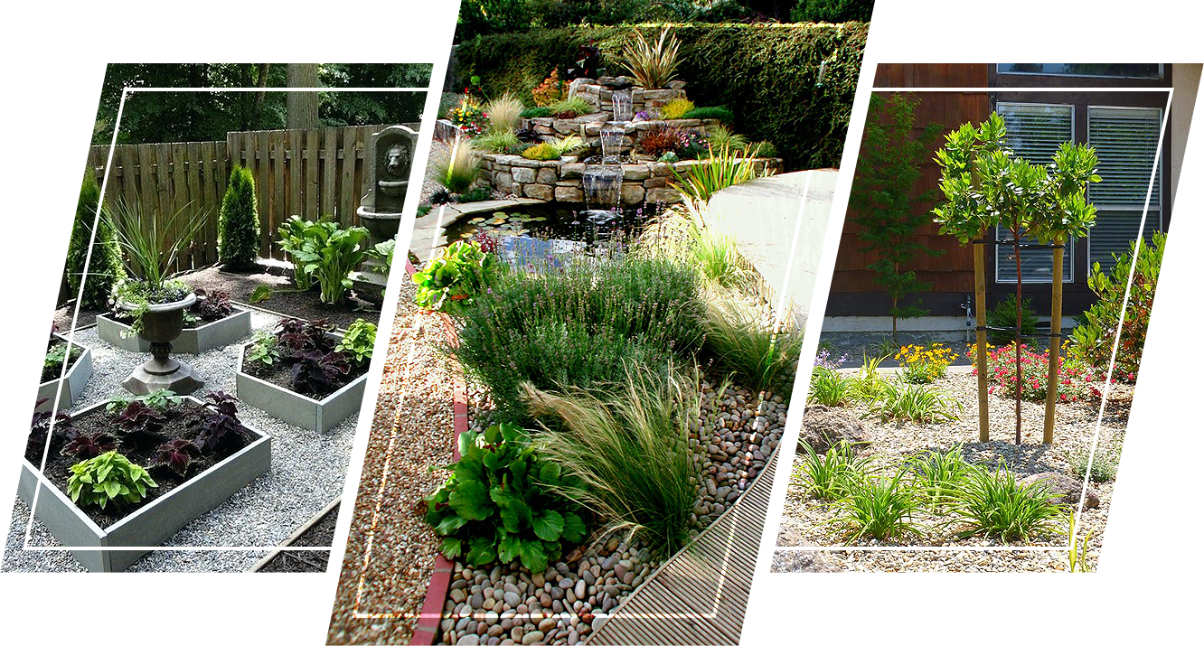 A modern garden utilizing raised beds to show plant borders