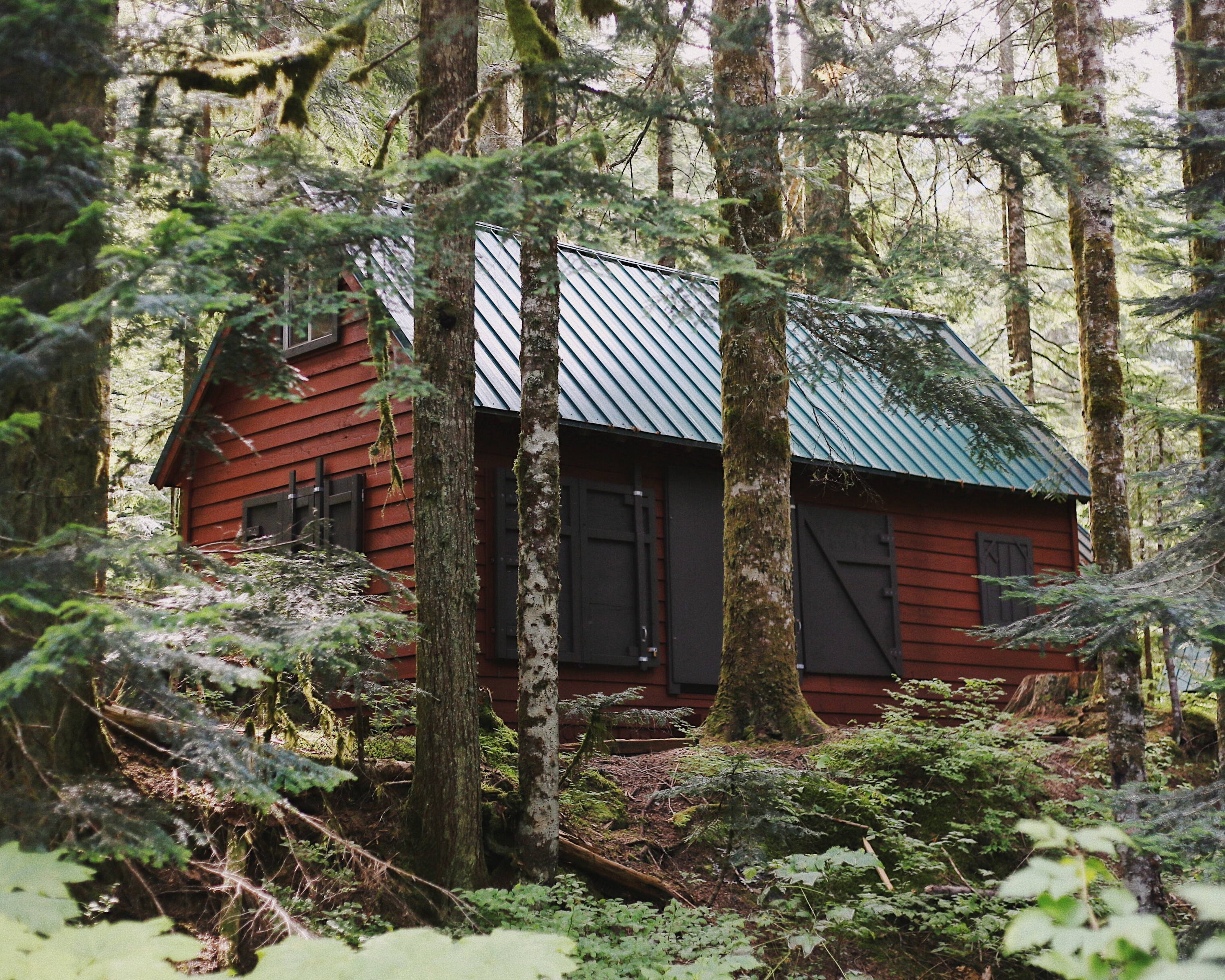 living off the grid in the woods