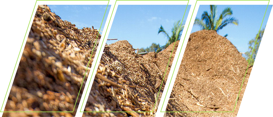 A closeup image of a pile of wood chips