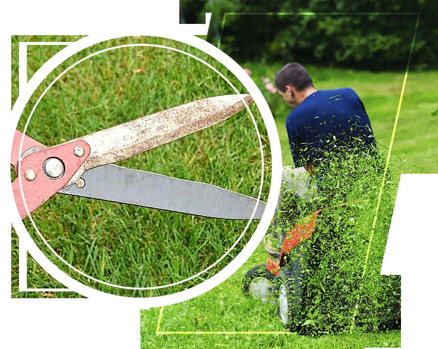 A person cutting grass