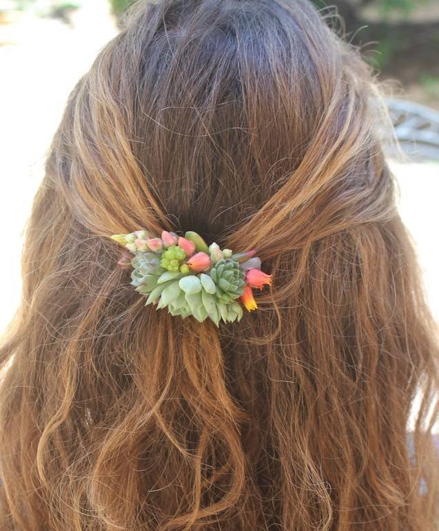 succulent combs wedding hair bride accent succulents